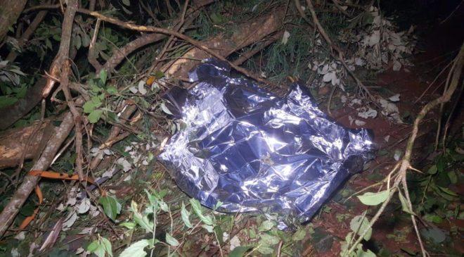 Acidente que matou homem na BR 369 aconteceu após surto, diz Viapar